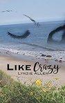 like-crazy-lynzie-allen